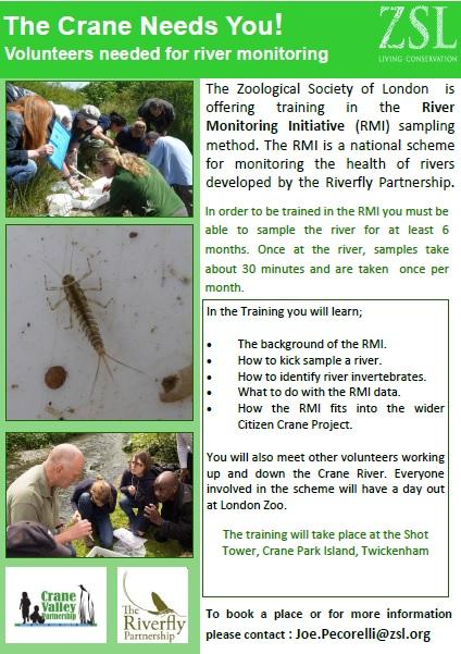 Crane Riverfly project PDF