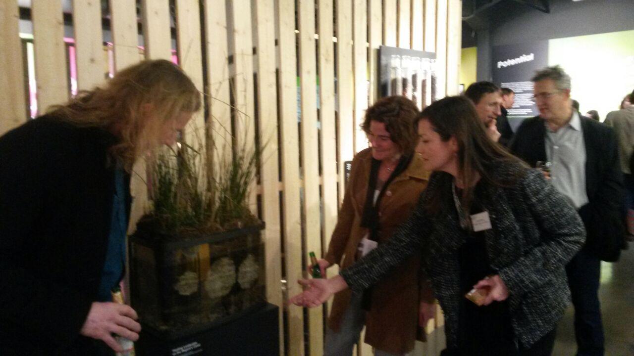 Rethinking the urban landscape exhibition's BioHaven display