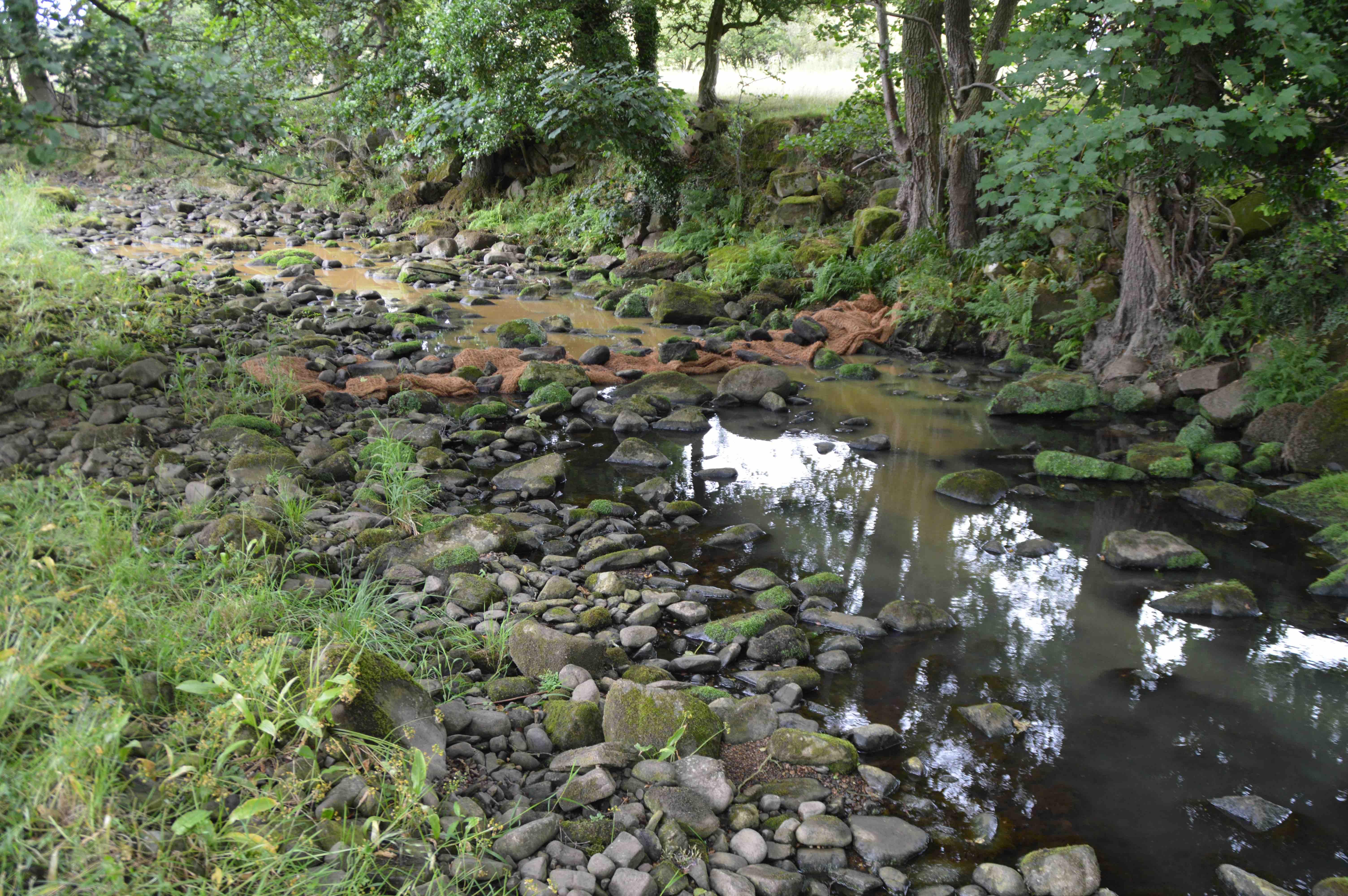 Floc Mats in stream