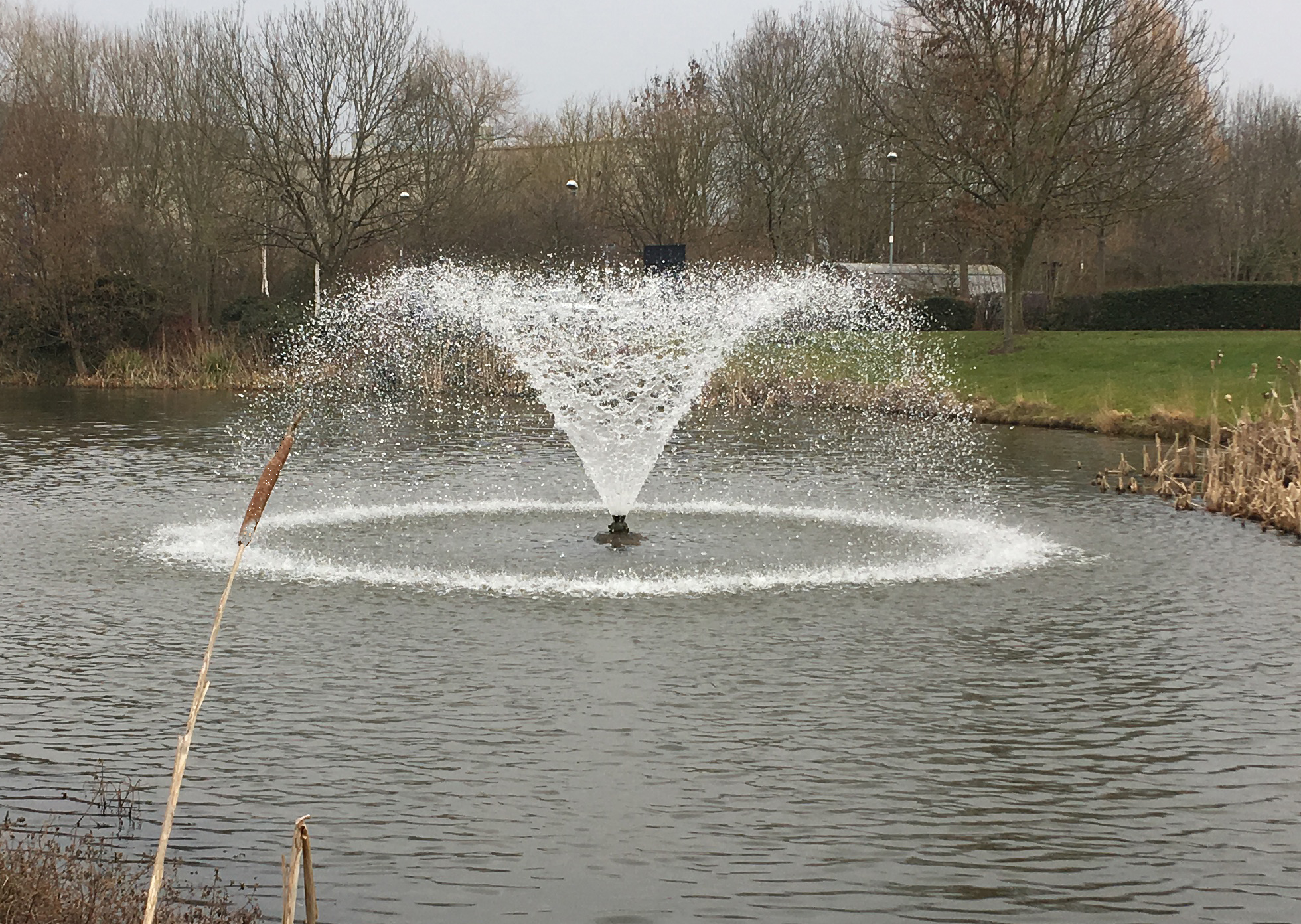 Surface aeration fountain
